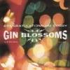 Gin Blossoms: Congratulations I'm Sorry